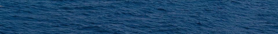 Ocean Banner